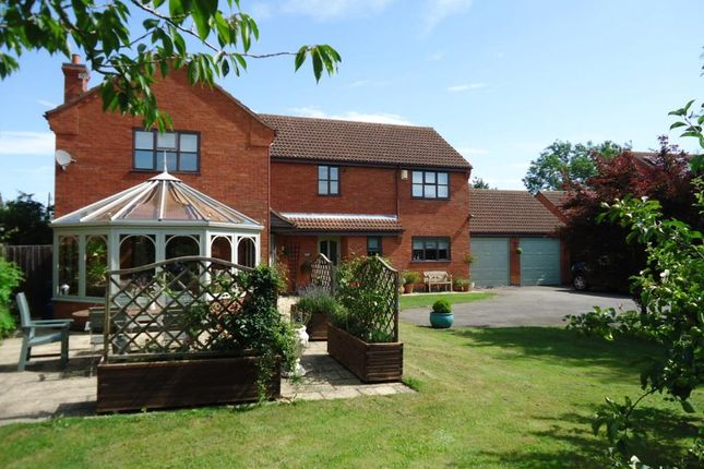 Thumbnail Detached house to rent in Manor Park, Hougham, Grantham, Lincs