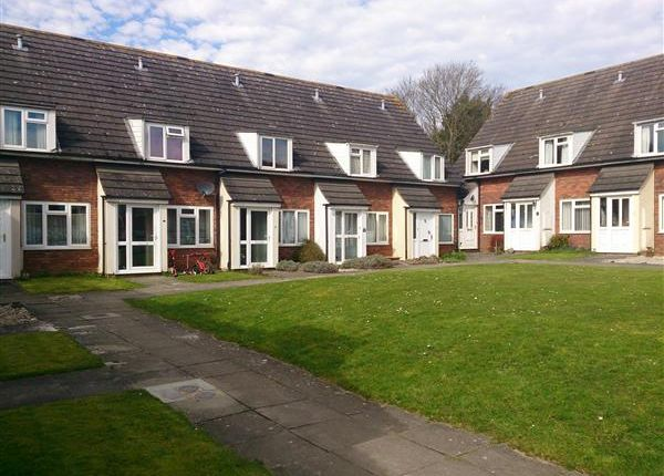 Thumbnail Terraced house to rent in Syringa Court, Salisbury, Salisbury