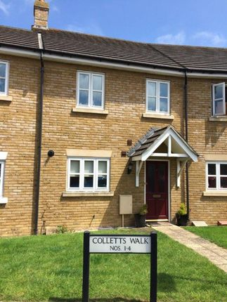 Thumbnail Terraced house to rent in Colletts Walk, Martock, Somerset