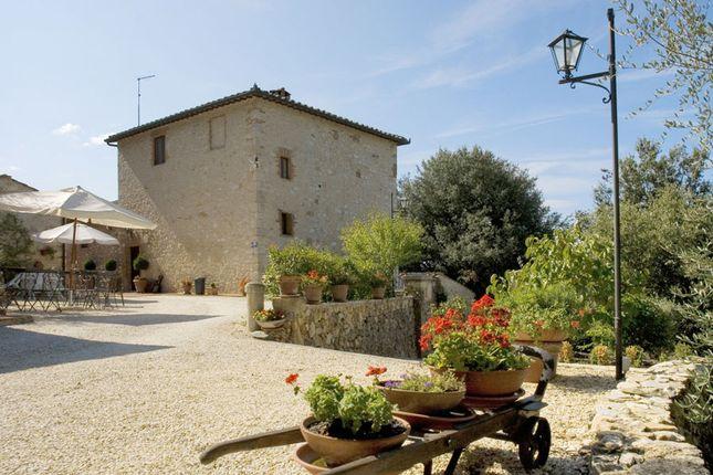 Photo of Sp 99, Sovicille, Siena, Italy