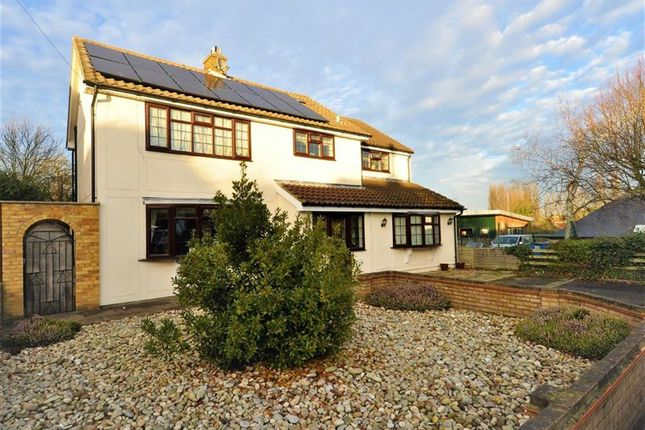 Thumbnail Detached house for sale in Walker Avenue, Fyfield, Ongar