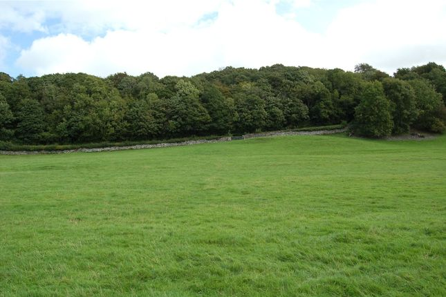 Lot 3 of Meadow & Pasture Land Underbarrow, Thorns Lane, Underbarrow, Kendal, Cumbria LA8
