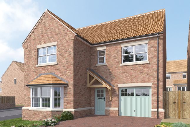 Thumbnail Detached house for sale in The Birch, The Meadows, Topcliffe Lane, Dishforth