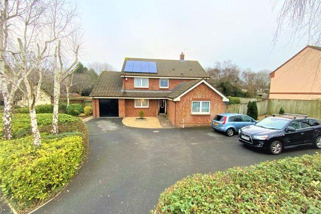 4 bed detached house for sale in Mulberry Way, Roundswell, Barnstaple EX31
