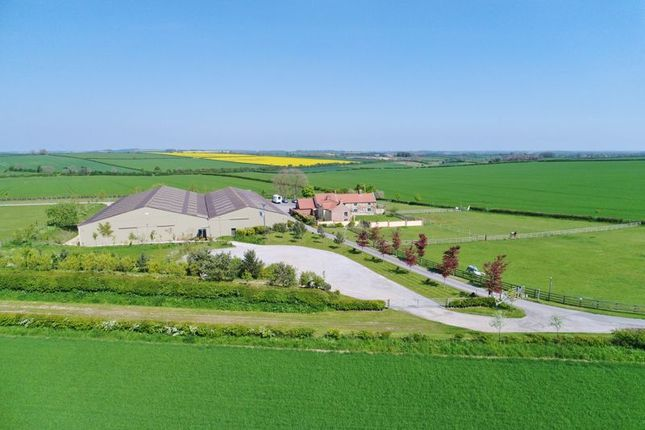 Thumbnail Equestrian property for sale in Nafferton, Driffield