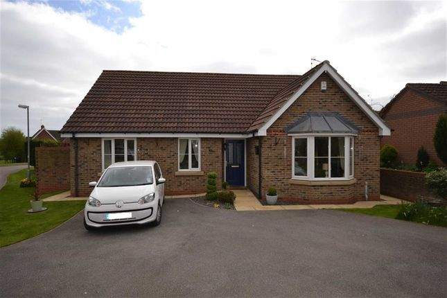 Thumbnail Detached bungalow for sale in Springfield Close, Sigglesthorne, East Yorkshire