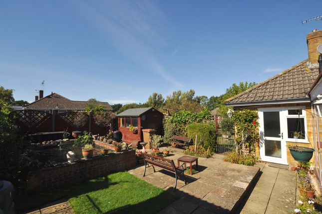 Thumbnail Semi-detached bungalow for sale in Orchard Close, Normandy, Guildford