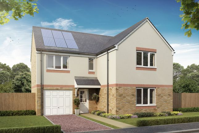"""Thumbnail Detached house for sale in """"The Lismore"""" at Dunlop Road, Stewarton, Kilmarnock"""