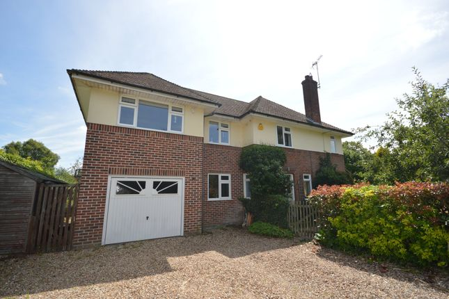 Thumbnail Detached house for sale in Irvine Road, Colchester