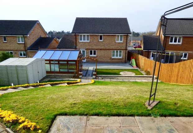 Rear Garden of Summerpark Road, Dumfries, Dumfries And Galloway DG1