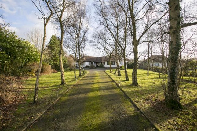 Thumbnail Detached house for sale in The Broyle, Shortgate, Lewes, East Sussex