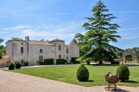 Thumbnail Equestrian property for sale in Chadurie, Charente, France