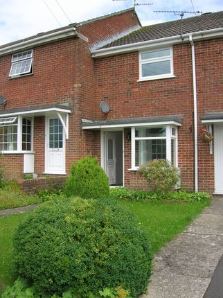 Thumbnail Terraced house to rent in Springfield Close, Shaftesbury, Dorset, .