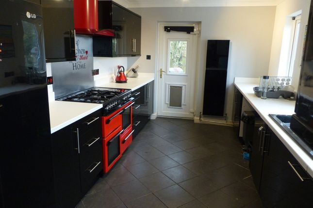 Thumbnail Detached house to rent in Glebeland Way, Torquay