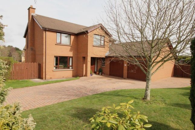 Thumbnail Detached house for sale in Aldergrange Park, Newtownards