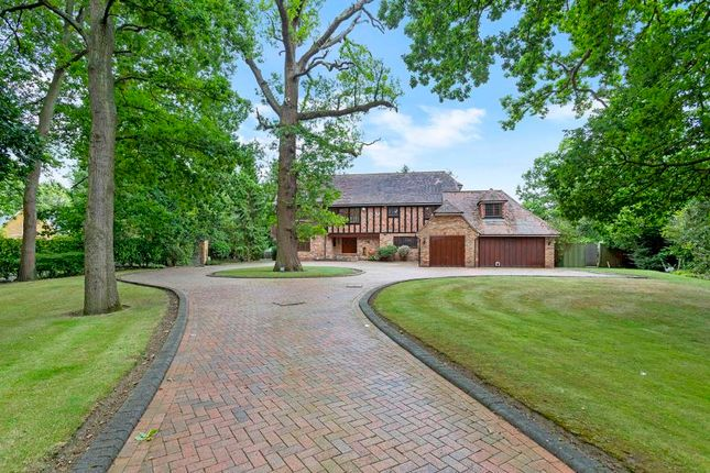 Thumbnail Property for sale in Dragon Lane, St George's Hill, Surrey