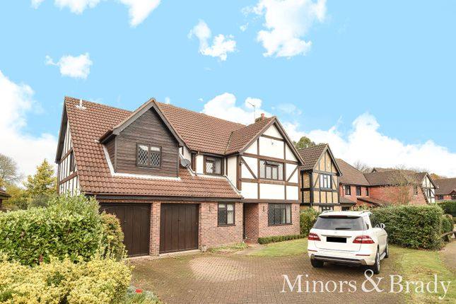 Thumbnail Detached house for sale in Altongate, Thorpe End, Norwich