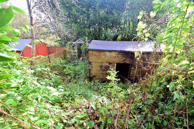 Garden of Boughthayes, Tavistock PL19