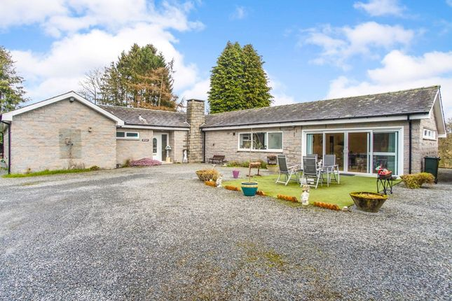 Thumbnail Detached bungalow for sale in Muthill Road, Crieff