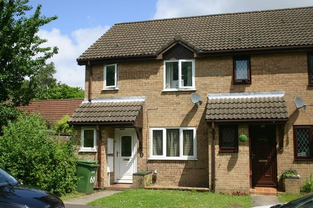 Thumbnail Semi-detached house to rent in Stirling Crescent, Grange Park, Hedge End, Southampton