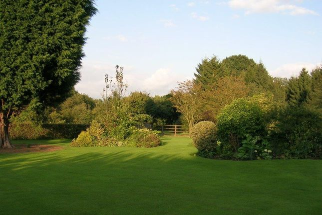 Thumbnail Country house for sale in Northcroft, Weedon, Aylesbury