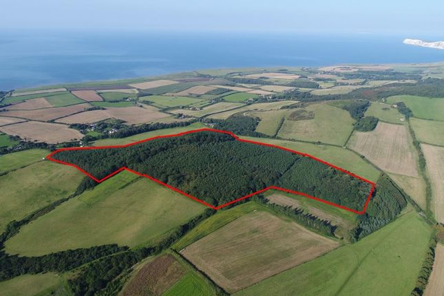 Thumbnail Land for sale in Grammar's Common Woodland, Strawberry Lane, Brighstone, Isle Of Wight