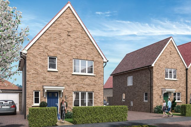 "Thumbnail Property for sale in ""The Hartley"" at Park Drive, Maldon, Essex"