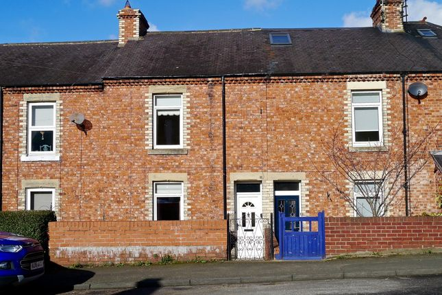 Thumbnail Terraced house for sale in Meadowfield Terrace, Stocksfield