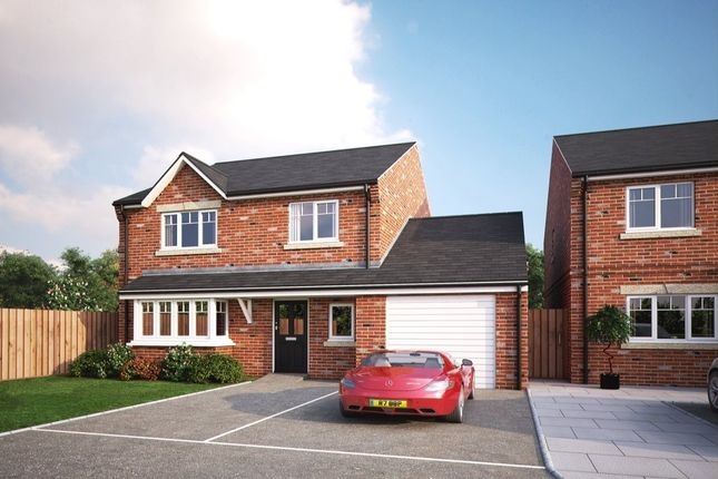 Thumbnail Detached house for sale in New Road, Norton, Doncaster, South Yorkshire