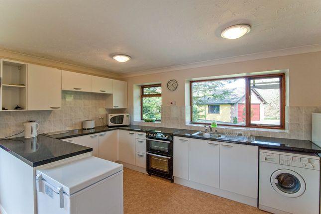 Thumbnail Detached bungalow for sale in Fen Lane, Garboldisham, Diss
