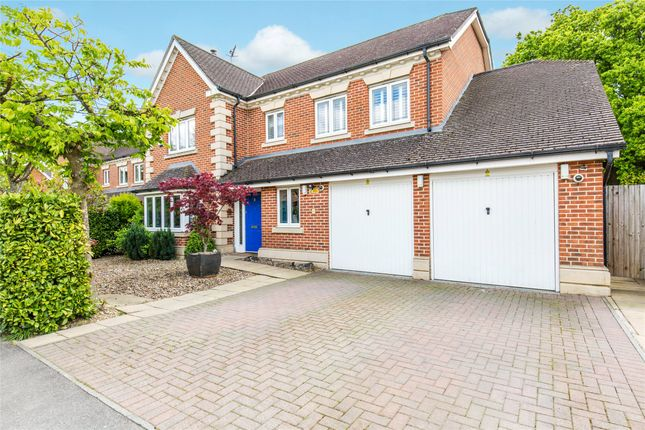 Thumbnail Detached house for sale in The Hollies, Oxted, Surrey