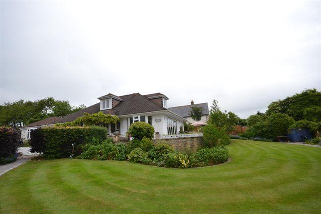 Thumbnail Detached bungalow for sale in Chideock, Bridport