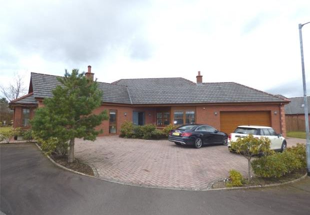 Thumbnail Detached bungalow for sale in Darrant Wynd, Terregles, Dumfries