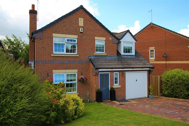 Thumbnail Detached house for sale in Hedingham Close, Ilkeston