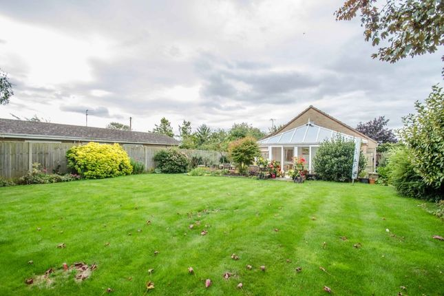 Thumbnail Bungalow for sale in Mereside, Soham, Ely