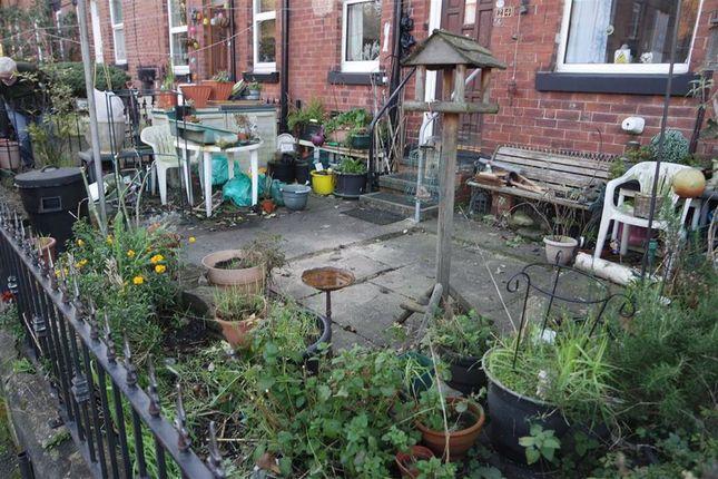 Garden: of Eyres Terrace, Armley, Leeds, West Yorkshire LS12