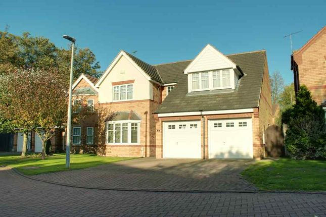 Thumbnail Detached house for sale in Sage Close, Beverley