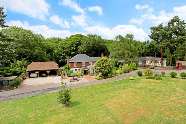 Thumbnail Equestrian property for sale in Hanging Birch Lane, Horam, Heathfield