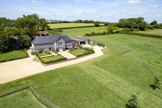 Thumbnail Detached house to rent in Beauworth, Alresford
