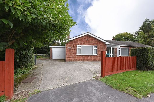 Detached bungalow for sale in Silchester Road, Bramley, Tadley