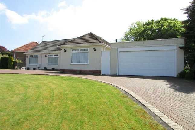 Thumbnail Detached bungalow for sale in Afan Valley Road, Cimla, Neath, West Glamorgan