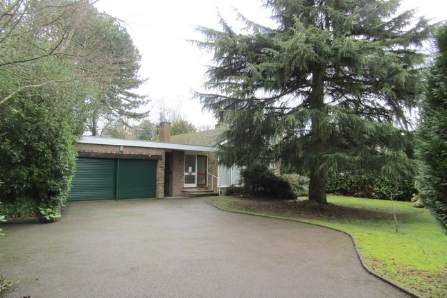 3 bed detached bungalow to rent in Middleton Road, Streetly, Sutton Coldfield B74