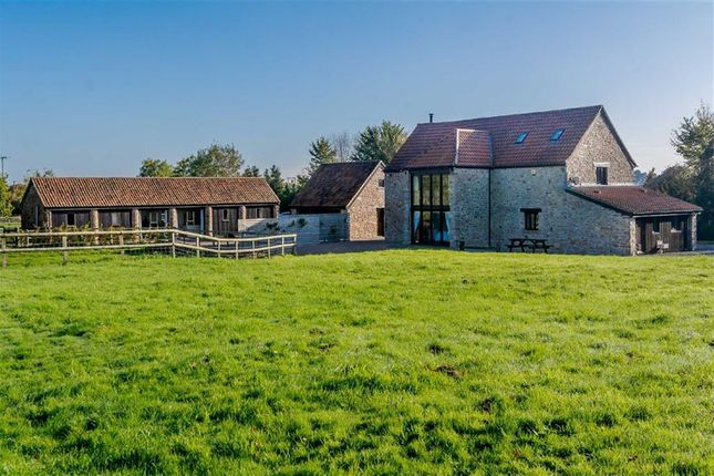 Thumbnail Detached house for sale in Tidenham, Chepstow