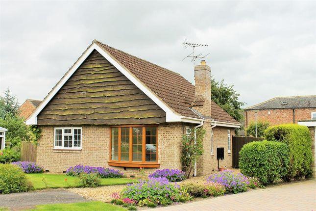 Thumbnail Detached house to rent in Mile End Park, Pocklington, York