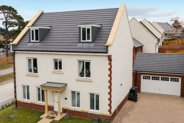 Thumbnail Detached house for sale in Daisy Lane, Newton Abbot