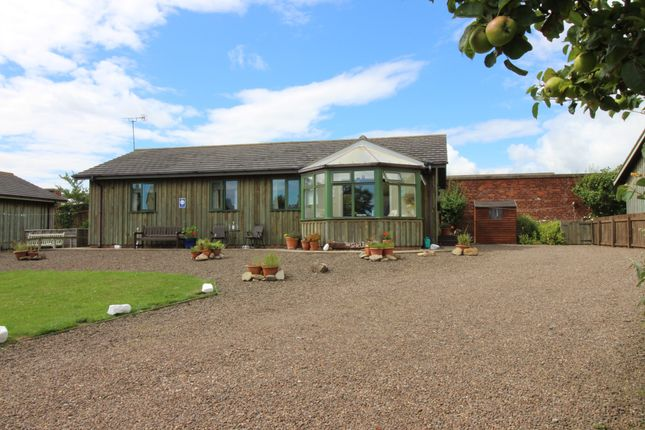 Thumbnail Cottage for sale in Eastfield Hall, Warkworth, Morpeth