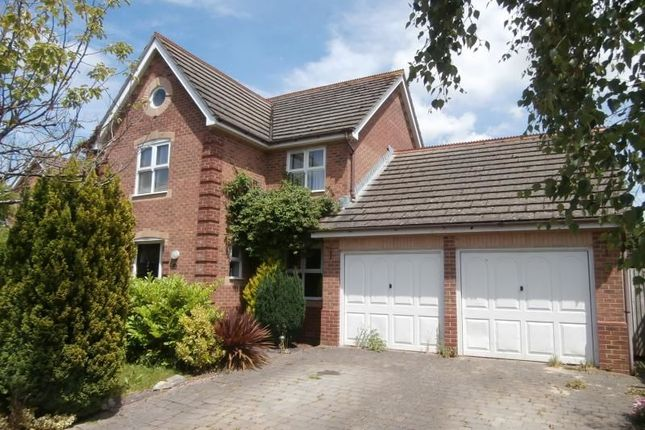 Thumbnail Detached house to rent in Topaz Grove, Waterlooville