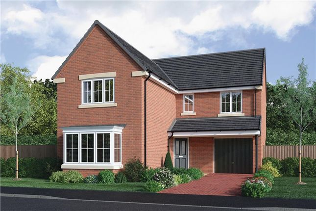 "Thumbnail Detached house for sale in ""The Fenwick"" at Choppington Road, Bedlington"