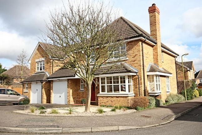 Thumbnail Detached house to rent in Wilson Close, Bishops Stortford, Herts