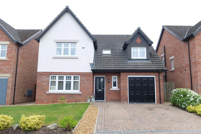 Thumbnail Detached house for sale in Turnstone Drive, Carlisle